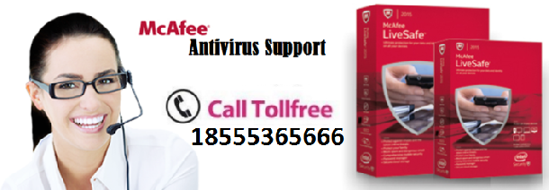 18555365666 McAfee Antivirus Helpline Number